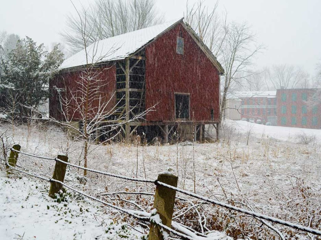 Snow More
