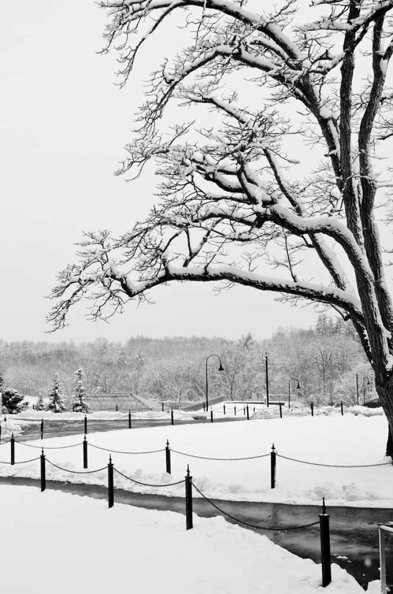Winter Note