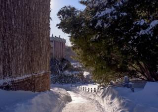 Winter Ahead