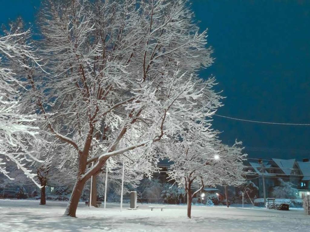 Ice Dream (II)
