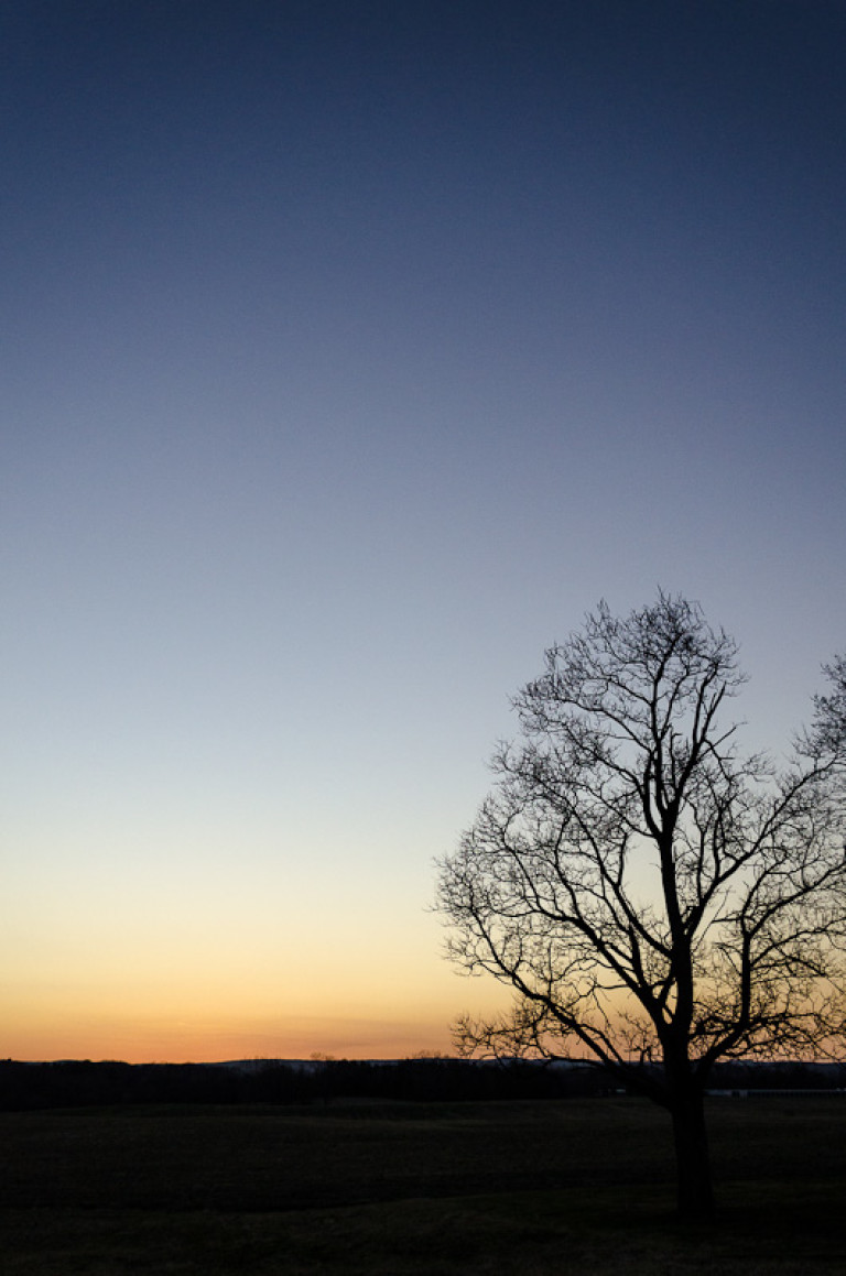 Metastasis/The Art of Winter