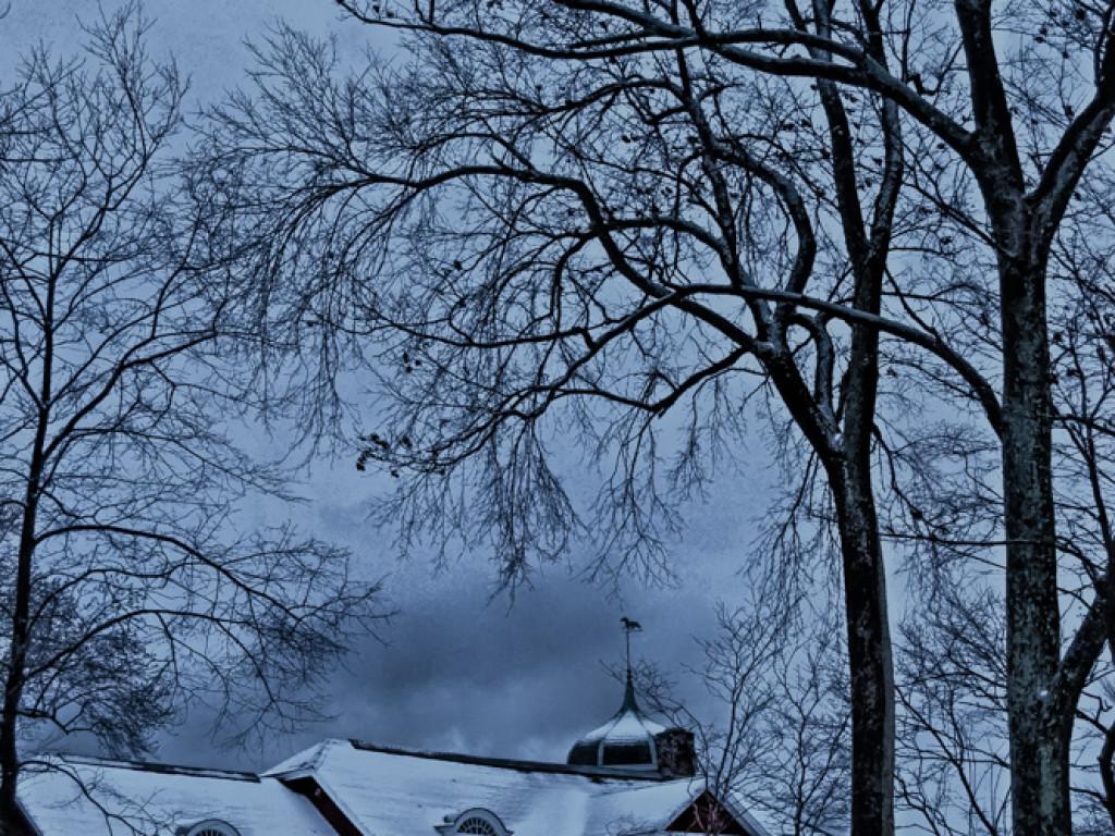 Winter's Heart