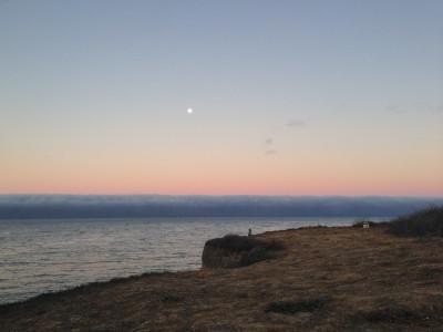 Davenport Moon